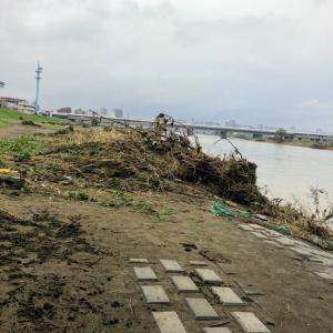 台風19号に伴う多摩川の氾濫Tamagawa20191014_03