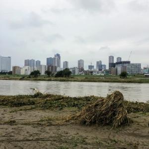 台風19号に伴う多摩川の氾濫Tamagawa20191014_04