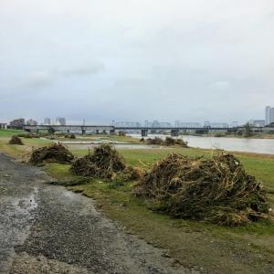 台風19号に伴う多摩川の氾濫Tamagawa20191014_05